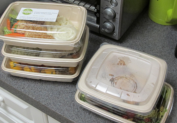 The Green Spoon eco-friendly containers